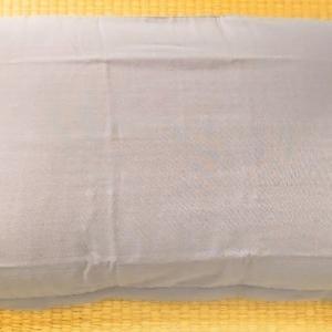 ストレートネックでむち打ちになり、3万円の枕を買った