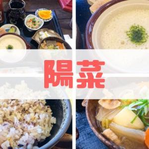 【加賀丸芋麦とろ 陽菜】お得なとろろ定食が人気の超穴場店!