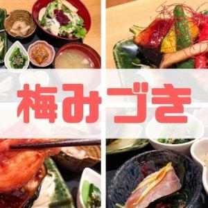【梅みづき】本格和食が低価格でランチができる穴場店をレビュー!