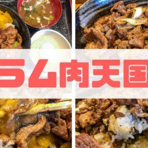 【ラム肉天国】たっぷりのラム肉を使った絶品ラム肉丼をレビュー!