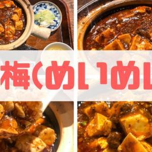 【梅梅(めいめい)】尾張町にある本格的な絶品中華料理屋をレビュー