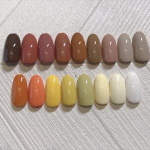 イロジェル(irogel)カラーチャート ベージュ・ブラウン・イエロー系17色