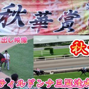 ジェンティルドンナ 牝馬三冠達成の瞬間・第17回 秋華賞 2012年 現地撮影蔵出し映像 競馬