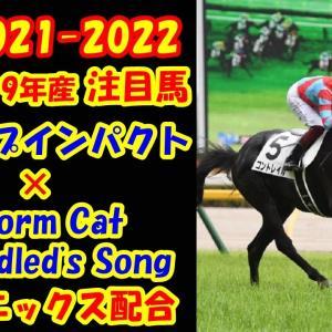 【競馬POG 2021-2022 #1】ディープインパクト×ストームキャット、アンブライドルズソングの2019年産駒は何頭いるのか?