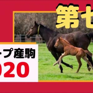 【POG】走らないと思うディープの2歳馬 550キロの牝馬、シャケトラ妹のサブァニャン、ワグネリアン妹のミスフィガロ 第七弾