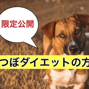 保護中: 耳つぼダイエットの方法【クライアント様限定公開】