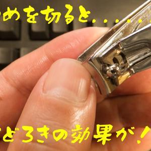タッチタイピング修得のコツは爪を切る事が大切です
