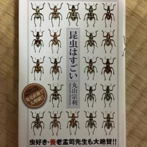 「昆虫はすごい」丸山宗利
