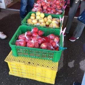 余市、仁木でリンゴとブドウを買い込む