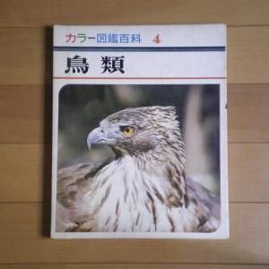 カラー図鑑百科 4 鳥類