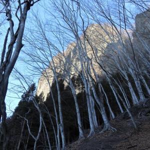 群馬県・立岩登山コース~威怒牟畿不動滝 [20/02/24] ~線ヶ滝から左回り山頂周回コース~