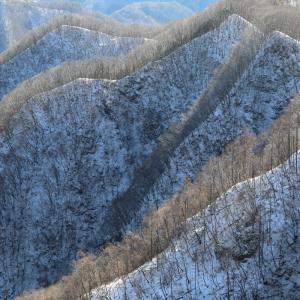 群馬県・笠丸山 [20/01/19] ~住居附から地蔵峠への周回コース~