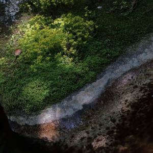 俺のPhotography Vol.18 ~G7 X Mark2で こんな写真を撮りました~