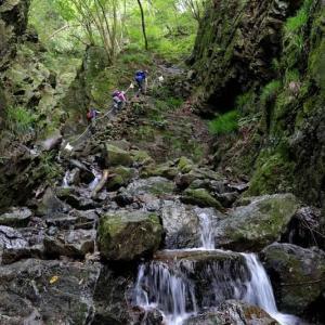 埼玉県・棒ノ折山 [19/08/11] ~スリリングな渓谷沿いの道を登り、展望の山頂へ~