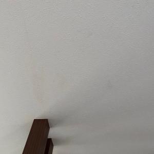 壁の汚れが気になるが。。。