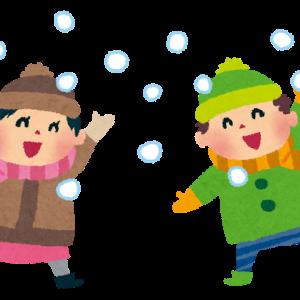 我が家の雪だるま(^-^)