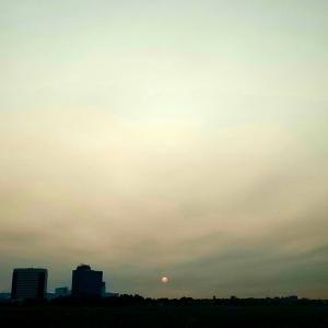 NYにもカリフォルニア山火事の影響、見たことない朝日
