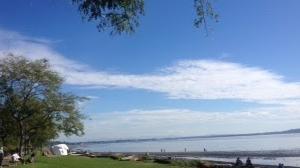 お天気が良い日は海辺を散歩したくなりますが、#stayhome 実行中
