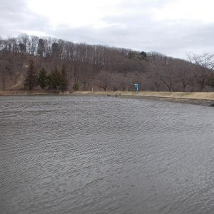 湖沼釣り日記(令和2年3月①・大槻公園釣行)