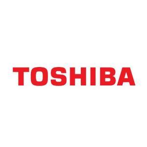 TOSHIBA E UNIVERSITA DI SHINSU SVILUPPANO INNOVATIVA CURA GENETICA NELLA CURA AI TUMORI