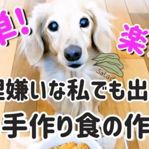犬の手作り食の作り方 簡単!料理嫌いな私でもできる!