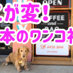 ここが変!日本の犬社会
