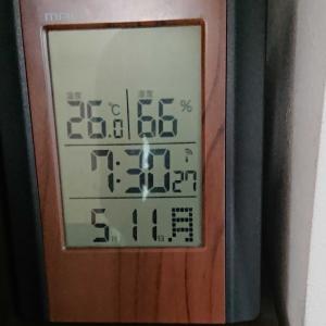 まだ5月なのに暑すぎる