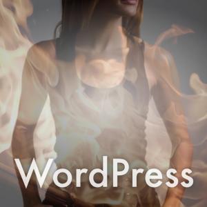 WordPressテーマ AFFINGERとSWELL 特典・アフィリエイト比較