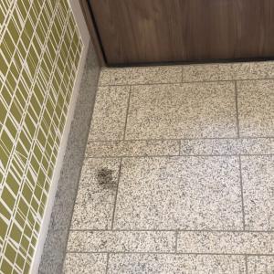 玄関の御影石の汚れ