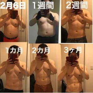 筋トレ3ヵ月の体の変化を30秒にまとめました!