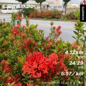 2021年 6月18日(金) 写真の花はサンタンカです。  道路脇の植え込みに、植えられています。