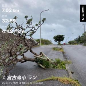 2021年 7月24日(土)  #台風6号 がやっと去った宮古島です。本当にやっとです。