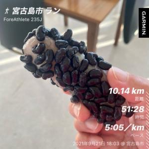 2021年 9月21日(火) 今夜は中秋の名月、十五夜です。 宮古島の十五夜には写真の「ふきゃぎ」を食べます。