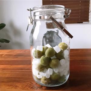 冷凍梅で梅シロップを作りました