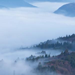 奮闘日記その8―ひよっこWebライター、五里霧中に陥る。