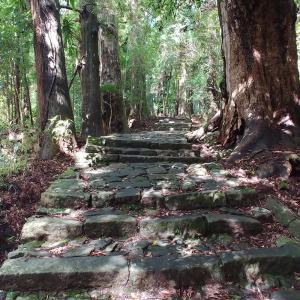 GO TO トラベルキャンペーンで熊野古道・那智の滝・那智大社のパワースポット巡り