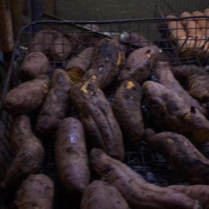 ホーチミン・ビンタン区:屋台の焼き芋屋さん♪濃厚で蜜たっぷりのしっとり焼き芋が絶品!