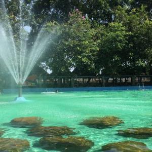 ホーチミンから車で30分!ビンズン省「Thuy Chau Ecotourism」は自然いっぱいの週末だけの水遊びスポット!