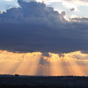 ヨハネスブルグの日常 ~南アフリカ~