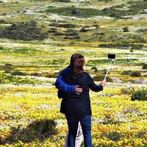 花巡り 広大な花畑に見惚れる人々 @ウエストコースト国立公園 その② ~南アフリカ~