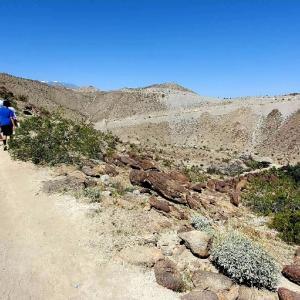 砂漠でハイキング♪