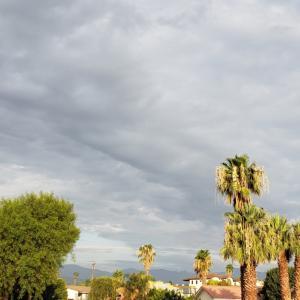 今日も曇り٩(ˊᗜˋ*)و