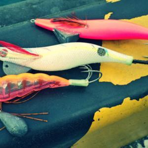 【実績重視】最盛期突入!現役タコ釣り師がおすすめする2020年『タコエギ』3選!