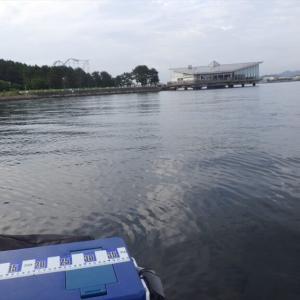 海の公園でサップで短時間釣行!マゴチ狙いでルアーを投げたらバイトが!!!