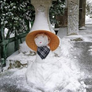 おはなしのタネNo.23 高野槙と雪だるま!