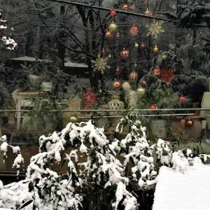 おはなしのタネ No.22 韓国 マイナス10℃の雪景色