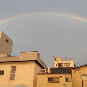 虹と朝ラン