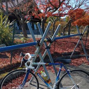 紅葉狩りサイクリングと使用期限