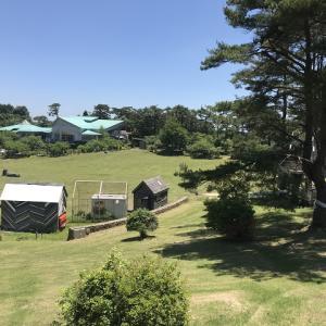 【神石高原ティアガルテン】キャンプ場のブロガーレビュー!