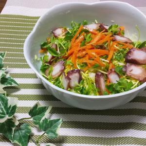 家庭菜園も楽しめて、栄養チャージ!一石二鳥の豆苗のサラダ